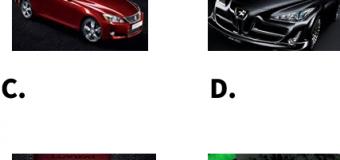 DELE Nivel A1レベル練習問題#4